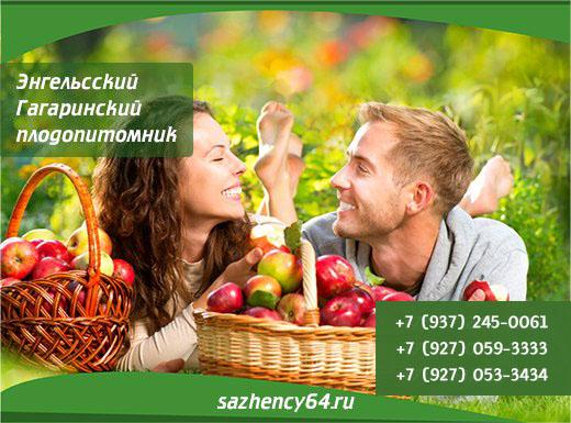 (c) Sazhency64.ru
